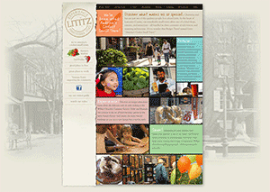 Lititzpa.com home page